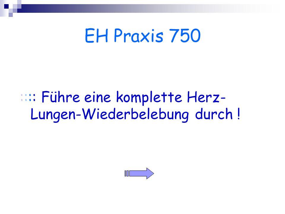 EH Praxis 750 :::: Führe eine komplette Herz- Lungen-Wiederbelebung durch !