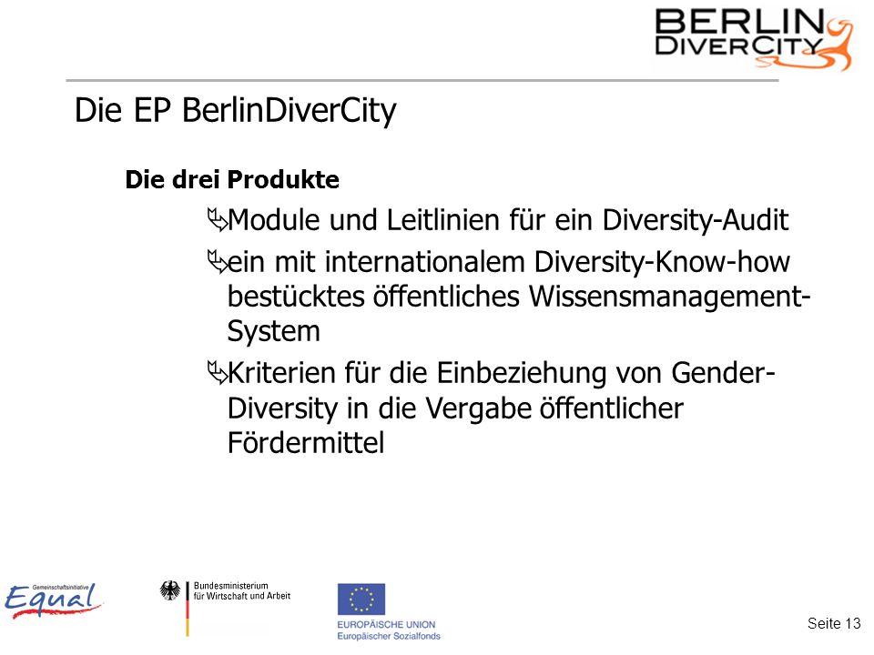 Die EP BerlinDiverCity Die drei Produkte Module und Leitlinien für ein Diversity-Audit ein mit internationalem Diversity-Know-how bestücktes öffentliches Wissensmanagement- System Kriterien für die Einbeziehung von Gender- Diversity in die Vergabe öffentlicher Fördermittel Seite 13