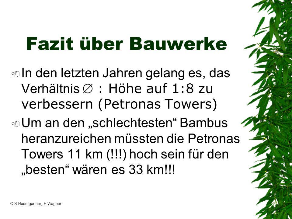 © S.Baumgartner, F.Wagner Fazit über Bauwerke In den letzten Jahren gelang es, das Verhältnis : Höhe auf 1:8 zu verbessern (Petronas Towers) Um an den