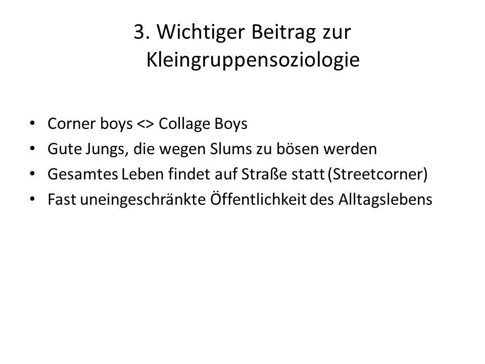 3. Wichtiger Beitrag zur Kleingruppensoziologie Corner boys <> Collage Boys Gute Jungs, die wegen Slums zu bösen werden Gesamtes Leben findet auf Stra
