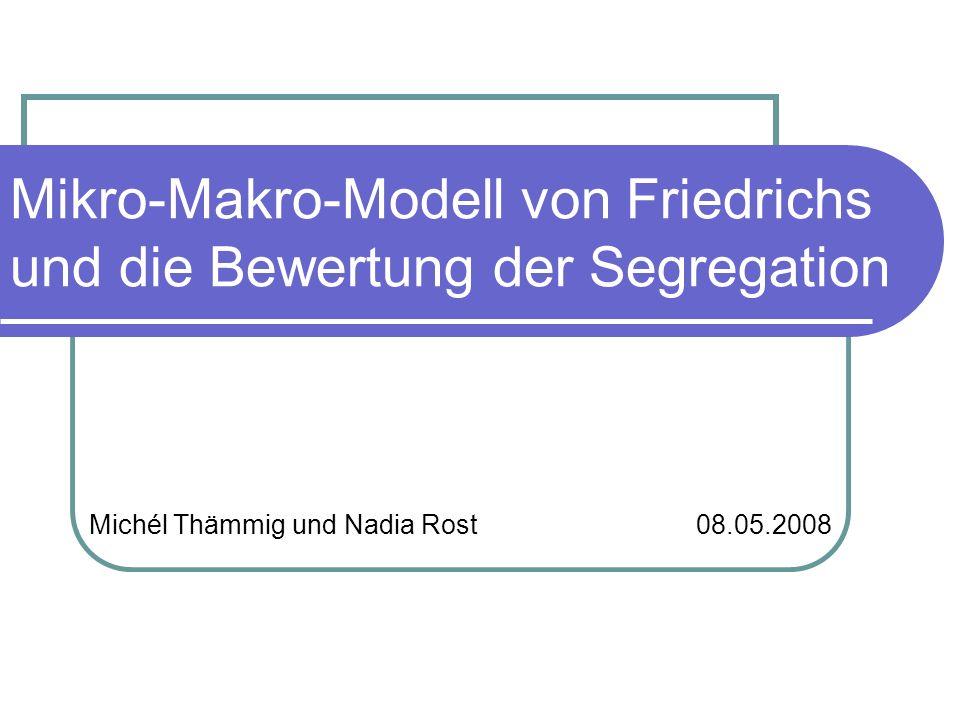 Mikro-Makro-Modell von Friedrichs und die Bewertung der Segregation Michél Thämmig und Nadia Rost 08.05.2008