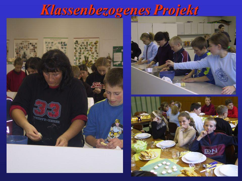 Klassenbezogenes Projekt