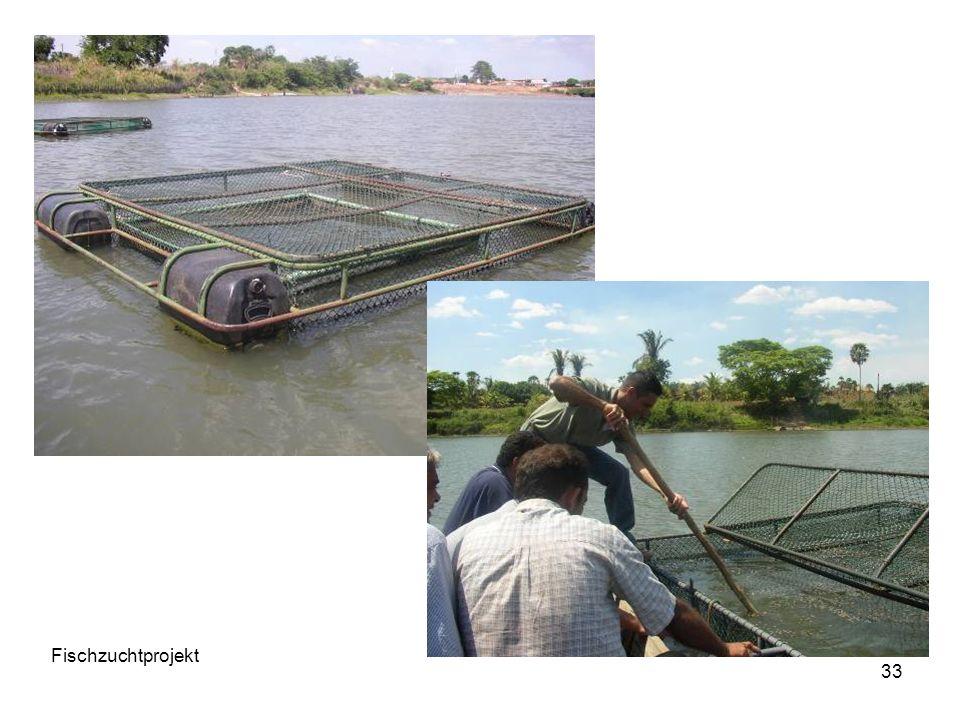 33 Fischzuchtprojekt