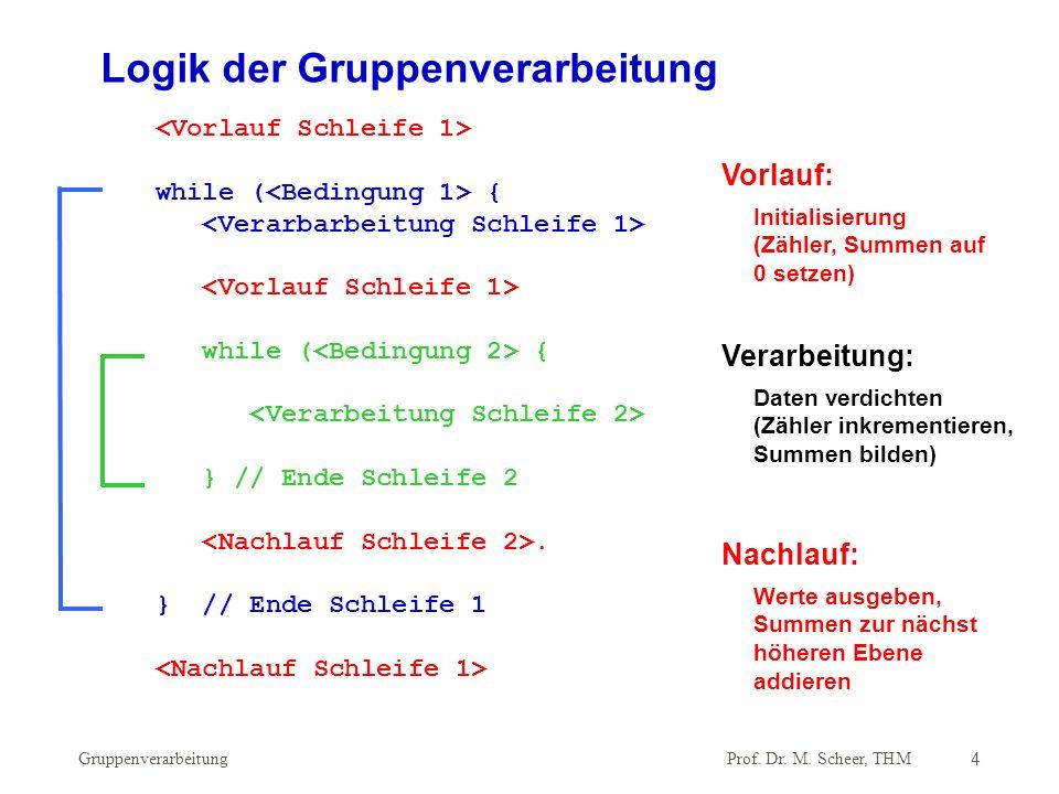 Prof. Dr. M. Scheer, THM Gruppenverarbeitung4 while ( { while ( { } // Ende Schleife 2. } // Ende Schleife 1 Logik der Gruppenverarbeitung Verarbeitun