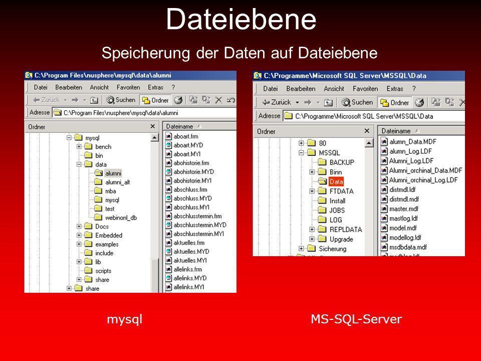 Dateiebene Speicherung der Daten auf Dateiebene mysqlMS-SQL-Server
