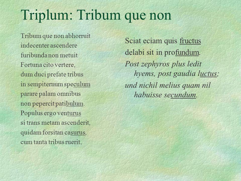 Triplum: Tribum que non Tribum que non abhorruit indecenter ascendere furibunda non metuit Fortuna cito vertere, dum duci prefate tribus in sempiternu