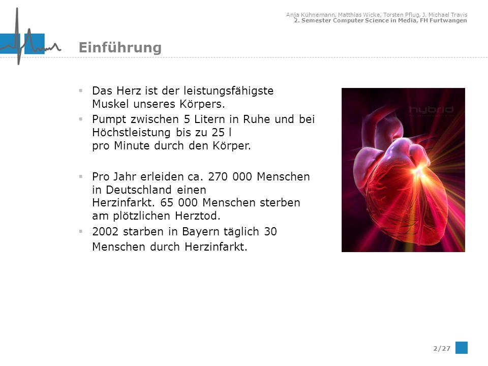 Anja Kühnemann, Matthias Wicke, Torsten Pflug, J. Michael Travis 2. Semester Computer Science in Media, FH Furtwangen 2/27 Einführung Das Herz ist der