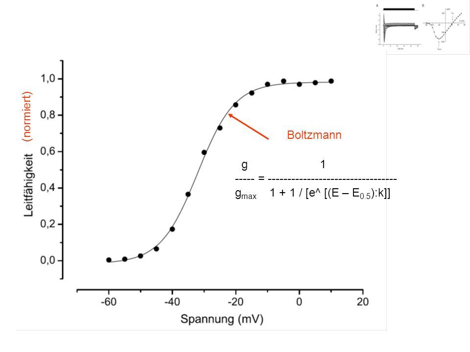 (normiert) g 1 ----- = --------------------------------- g max 1 + 1 / [e^ [(E – E 0.5 ):k]] Boltzmann