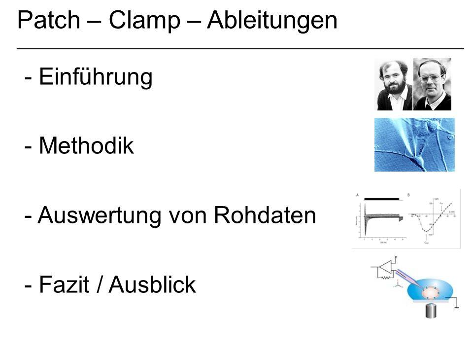 Patch – Clamp – Ableitungen _____________________________________________________________ - Einführung - Methodik - Auswertung von Rohdaten - Fazit /