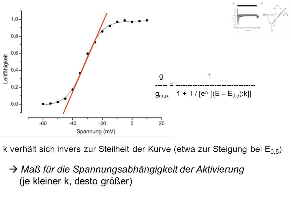 k verhält sich invers zur Steilheit der Kurve (etwa zur Steigung bei E 0,5 ) Maß für die Spannungsabhängigkeit der Aktivierung (je kleiner k, desto gr