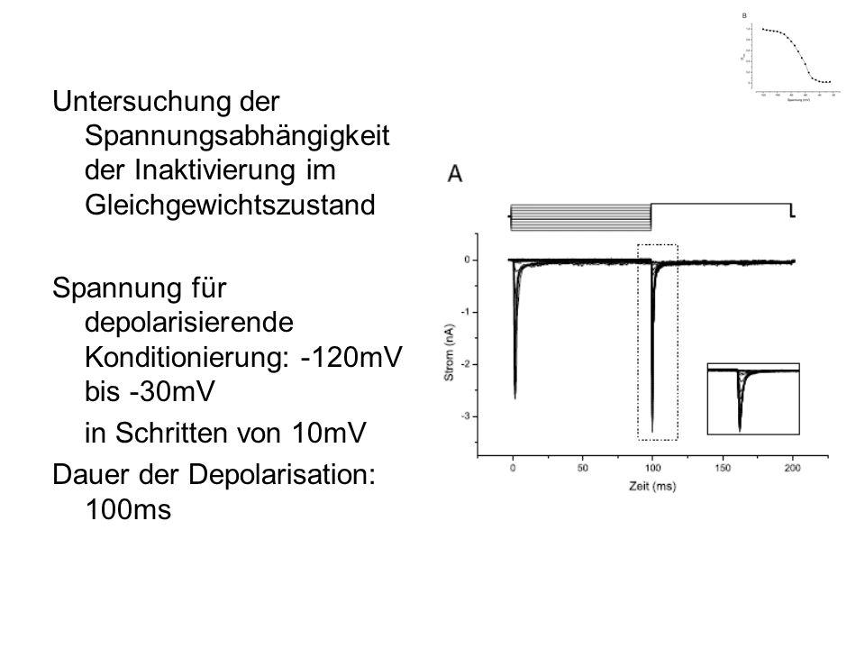 Untersuchung der Spannungsabhängigkeit der Inaktivierung im Gleichgewichtszustand Spannung für depolarisierende Konditionierung: -120mV bis -30mV in S