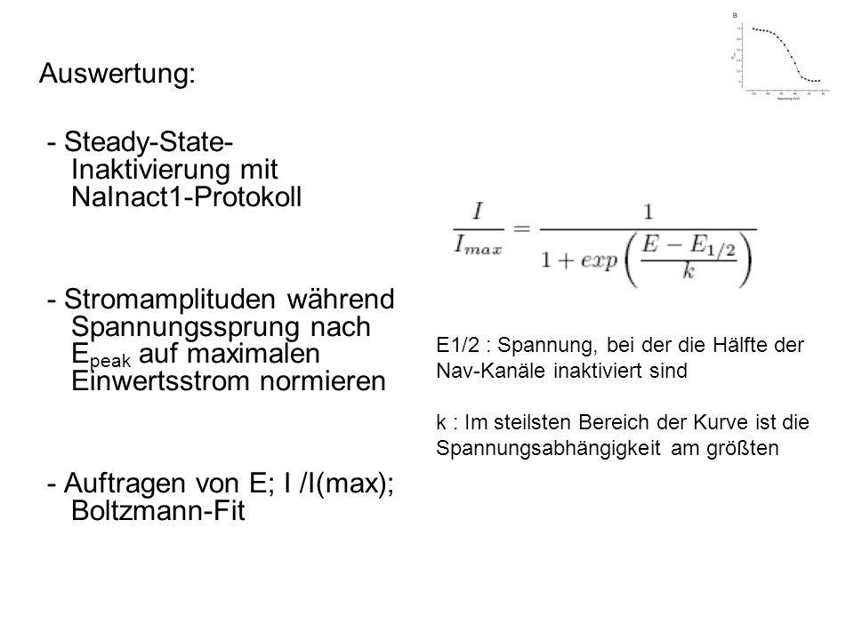 Auswertung: - Steady-State- Inaktivierung mit NaInact1-Protokoll - Stromamplituden während Spannungssprung nach E peak auf maximalen Einwertsstrom nor