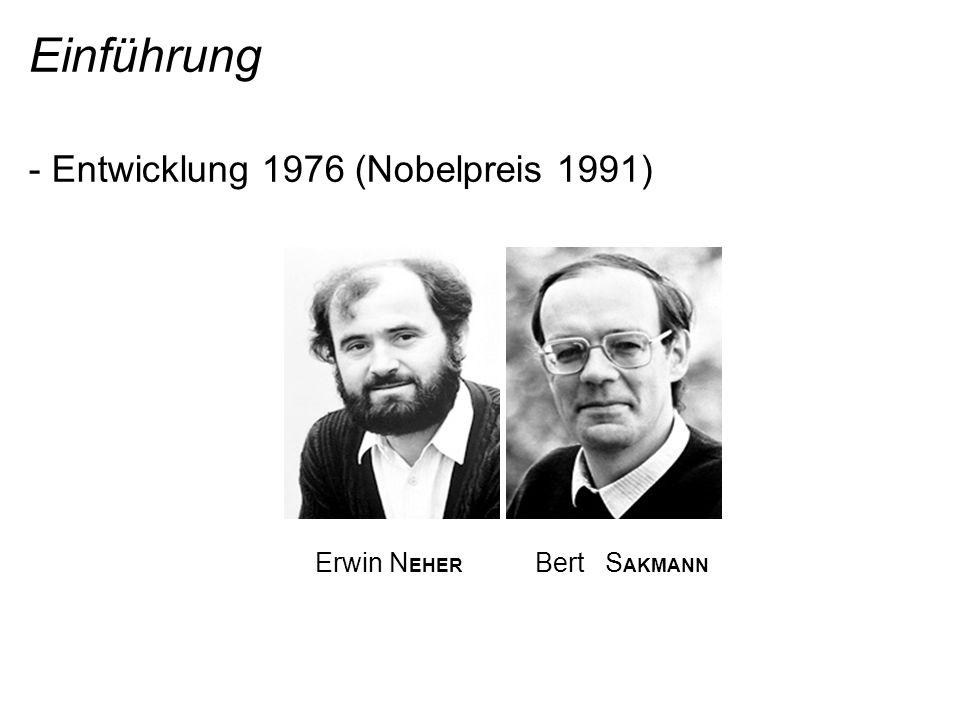 Einführung - Entwicklung 1976 (Nobelpreis 1991) Erwin N EHER Bert S AKMANN