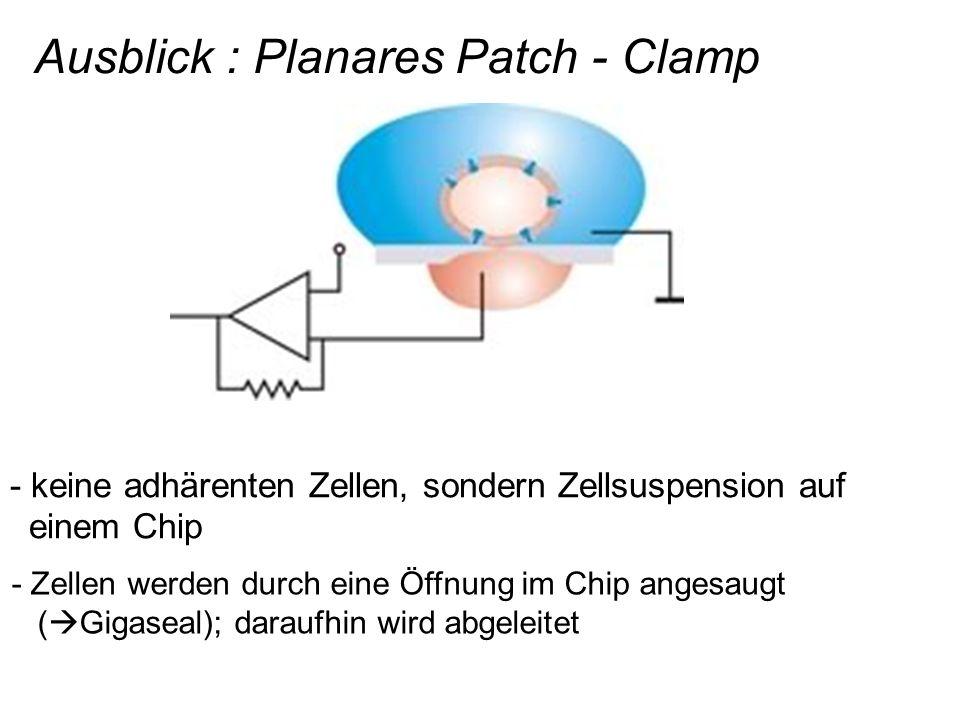 Ausblick : Planares Patch - Clamp - keine adhärenten Zellen, sondern Zellsuspension auf einem Chip - Zellen werden durch eine Öffnung im Chip angesaug