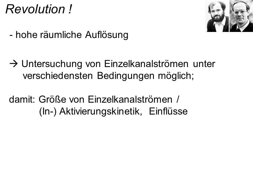 Revolution ! - hohe räumliche Auflösung Untersuchung von Einzelkanalströmen unter verschiedensten Bedingungen möglich; damit: Größe von Einzelkanalstr