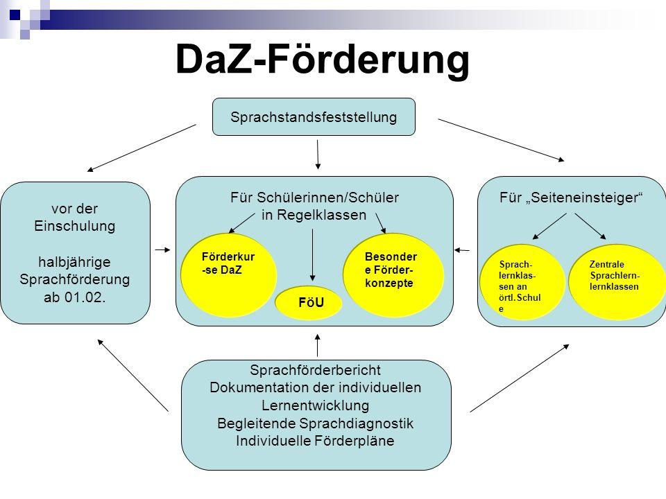DaZ-Förderung Sprachförderbericht Dokumentation der individuellen Lernentwicklung Begleitende Sprachdiagnostik Individuelle Förderpläne Für Schülerinn