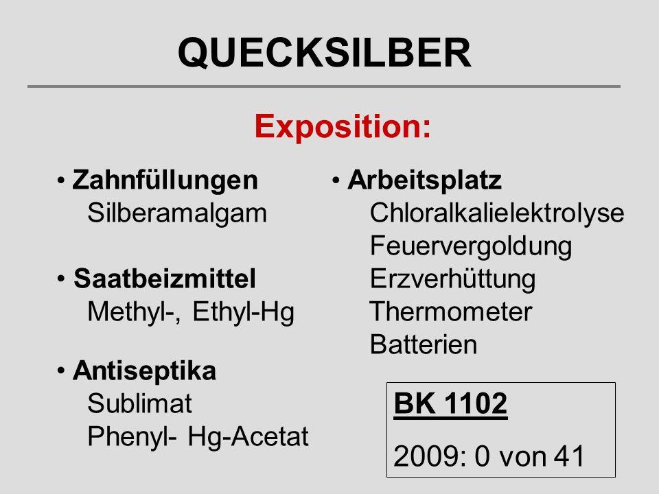 Exposition: Arbeitsplatz Chloralkalielektrolyse Feuervergoldung Erzverhüttung Thermometer Batterien Zahnfüllungen Silberamalgam Saatbeizmittel Methyl-