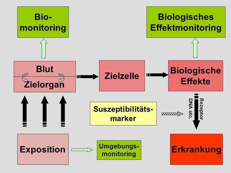 Exposition Bio- monitoring Biologisches Effektmonitoring Zielzelle Biologische Effekte Erkrankung Suszeptibilitäts- marker Rezeptor DNA etc.