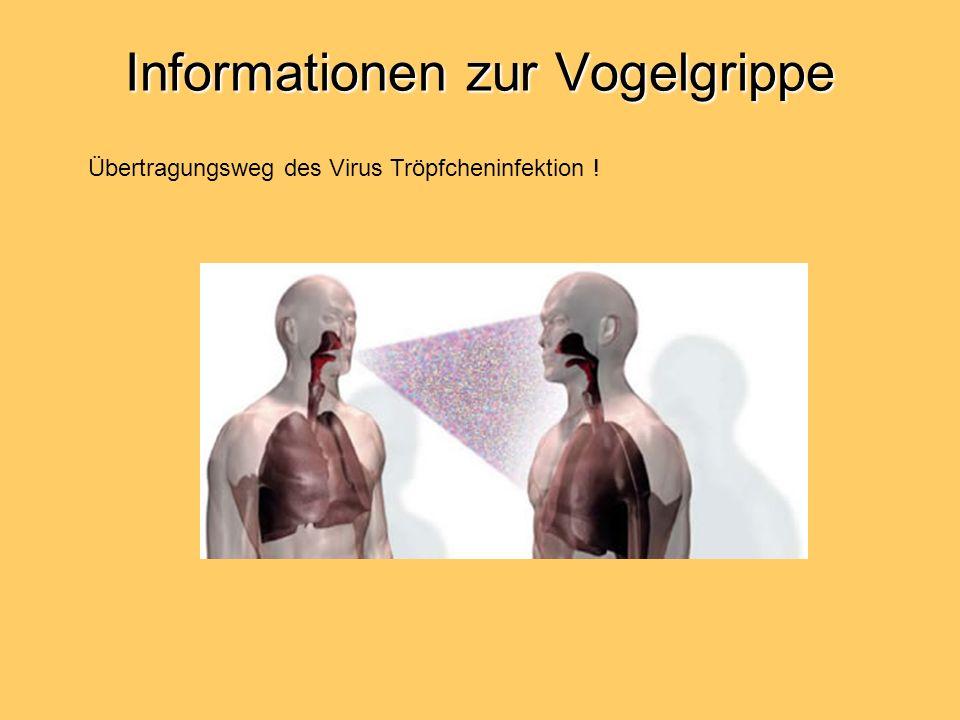 Informationen zur Vogelgrippe Übertragungsweg des Virus Tröpfcheninfektion !