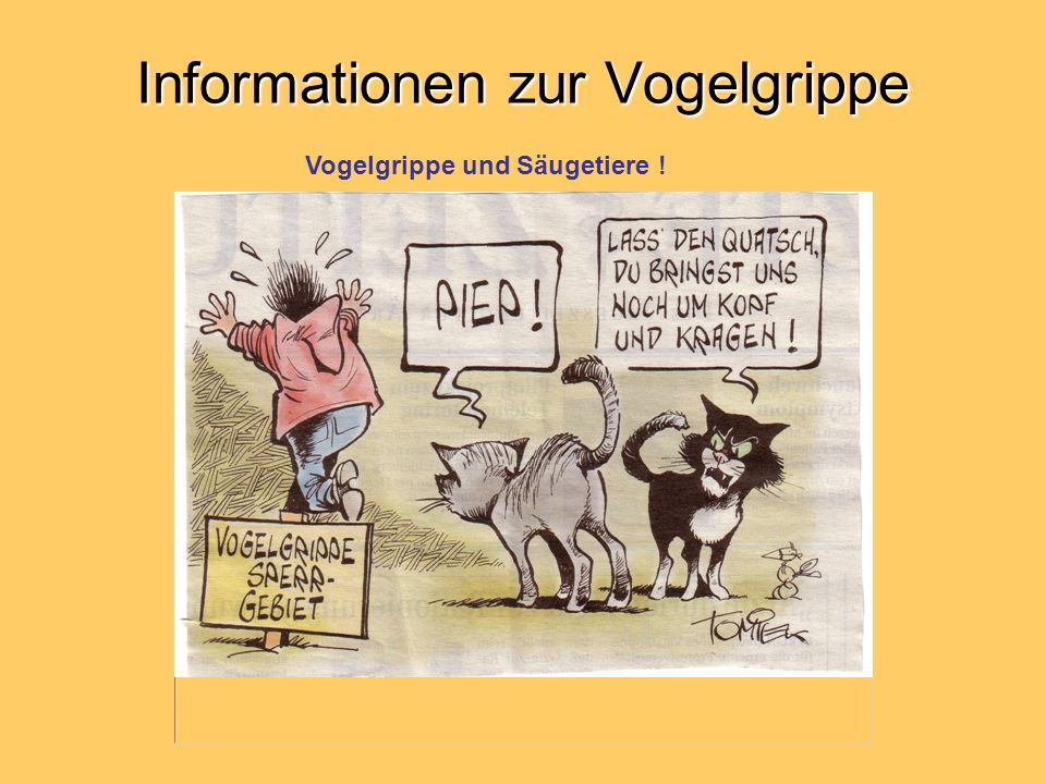 Informationen zur Vogelgrippe Vogelgrippe und Säugetiere !