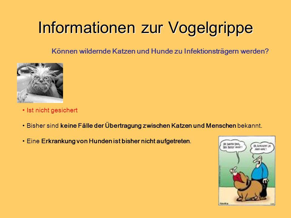 Informationen zur Vogelgrippe Ist nicht gesichert Bisher sind keine Fälle der Übertragung zwischen Katzen und Menschen bekannt. Eine Erkrankung von Hu