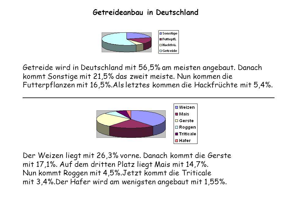 Getreide wird in Deutschland mit 56,5% am meisten angebaut. Danach kommt Sonstige mit 21,5% das zweit meiste. Nun kommen die Futterpflanzen mit 16,5%.