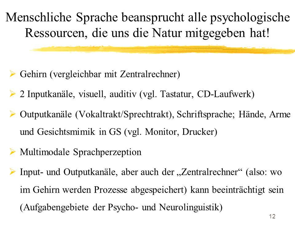12 Gehirn (vergleichbar mit Zentralrechner) 2 Inputkanäle, visuell, auditiv (vgl. Tastatur, CD-Laufwerk) Outputkanäle (Vokaltrakt/Sprechtrakt), Schrif