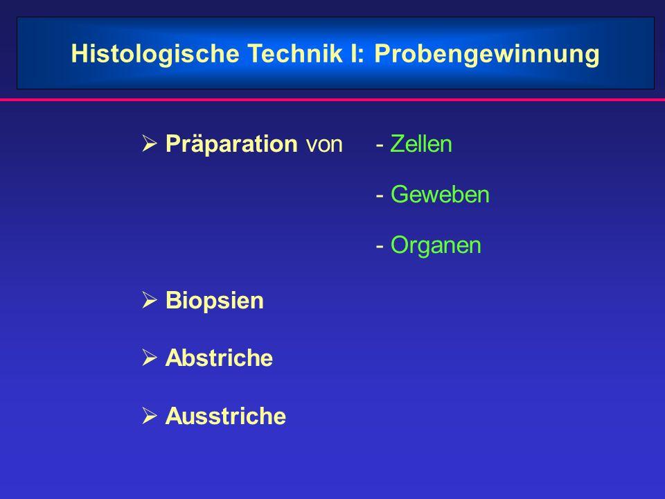 Histologische Technik I: Probengewinnung Präparation von - Zellen - Geweben - Organen Biopsien Abstriche Ausstriche