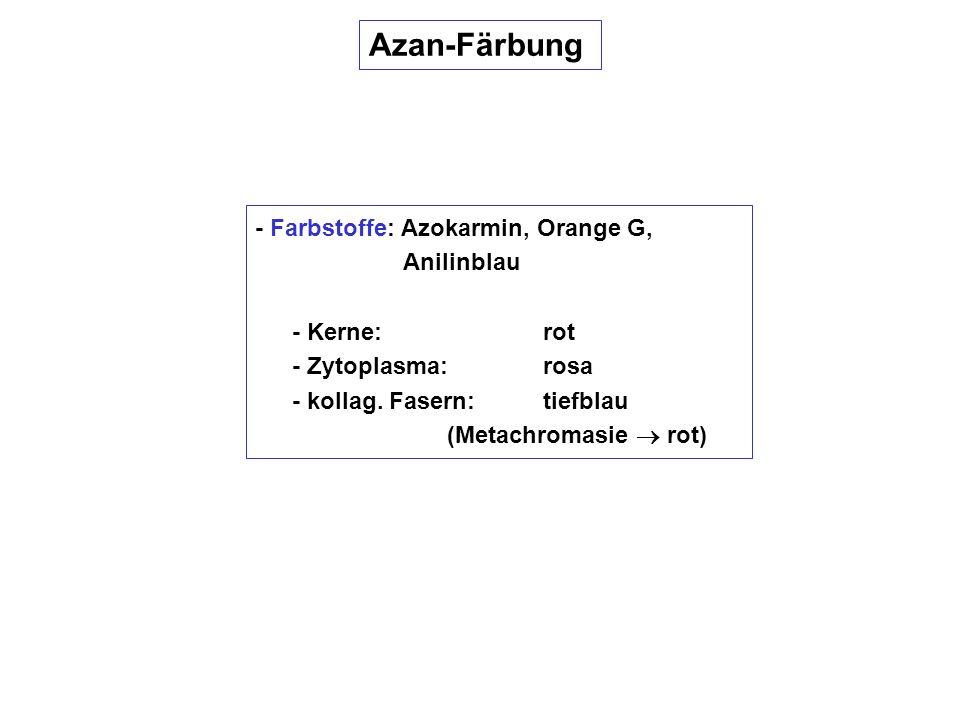 Azan-Färbung - Farbstoffe: Azokarmin, Orange G, Anilinblau - Kerne: rot - Zytoplasma:rosa - kollag. Fasern:tiefblau (Metachromasie rot)