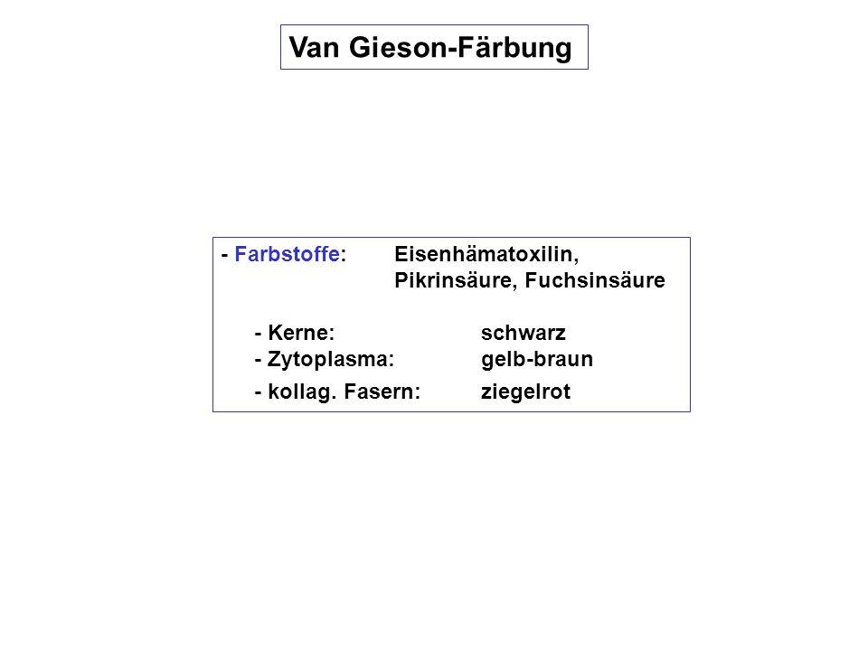 Van Gieson-Färbung - Farbstoffe: Eisenhämatoxilin, Pikrinsäure, Fuchsinsäure - Kerne: schwarz - Zytoplasma:gelb-braun - kollag. Fasern:ziegelrot
