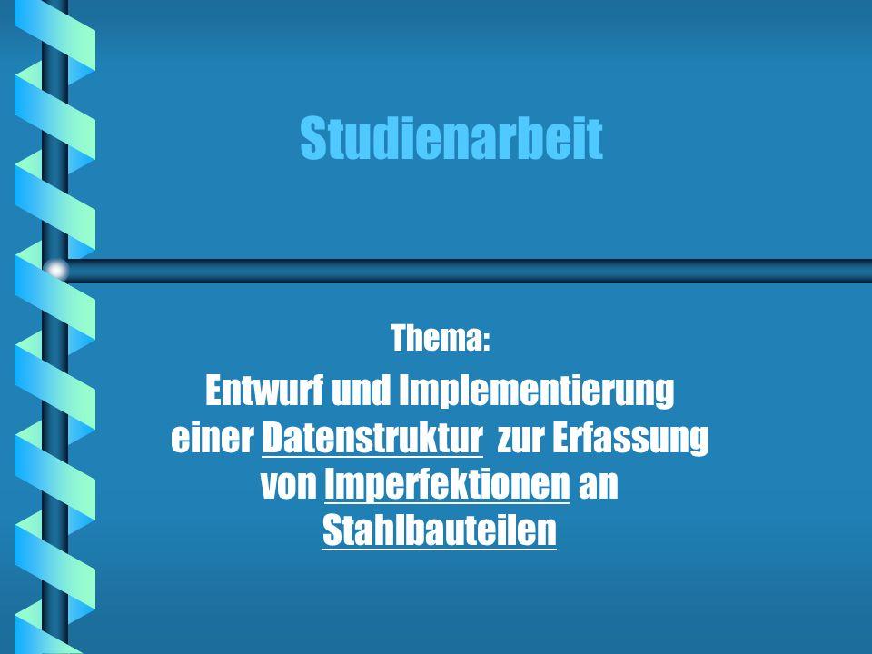 Studienarbeit Thema: Entwurf und Implementierung einer Datenstruktur zur Erfassung von Imperfektionen an Stahlbauteilen