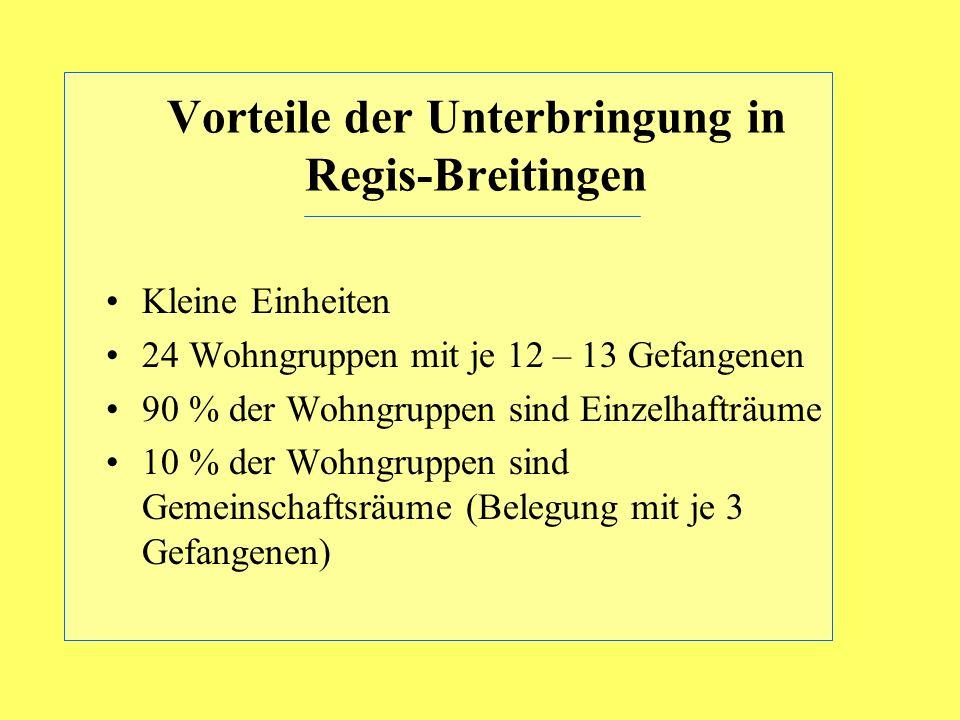 Vorteile der Unterbringung in Regis-Breitingen Kleine Einheiten 24 Wohngruppen mit je 12 – 13 Gefangenen 90 % der Wohngruppen sind Einzelhafträume 10