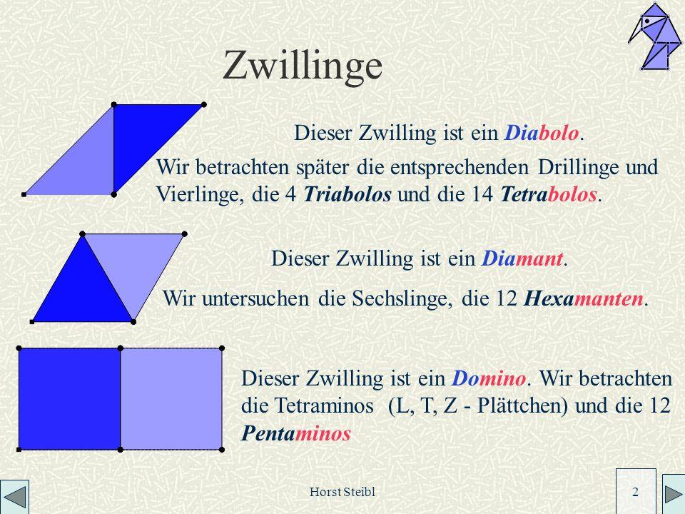 Horst Steibl 2 Zwillinge Dieser Zwilling ist ein Diabolo.