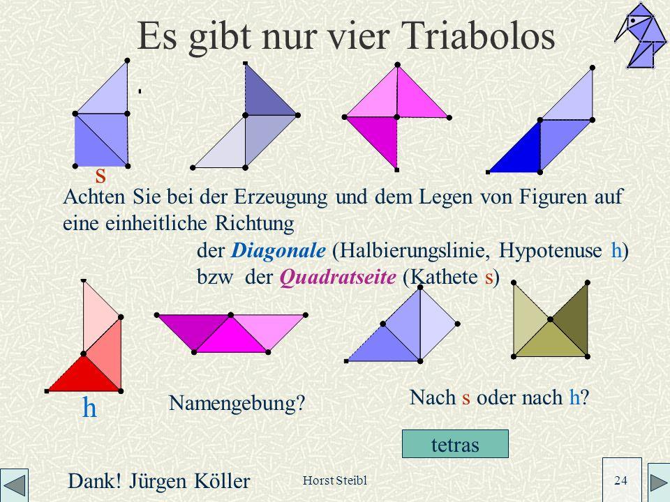 Horst Steibl 24 Es gibt nur vier Triabolos Achten Sie bei der Erzeugung und dem Legen von Figuren auf eine einheitliche Richtung der Diagonale (Halbierungslinie, Hypotenuse h) bzw der Quadratseite (Kathete s) s h Dank.