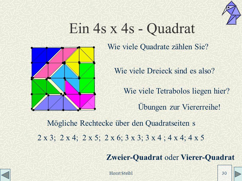 Horst Steibl 30 Ein 4s x 4s - Quadrat Wie viele Quadrate zählen Sie.
