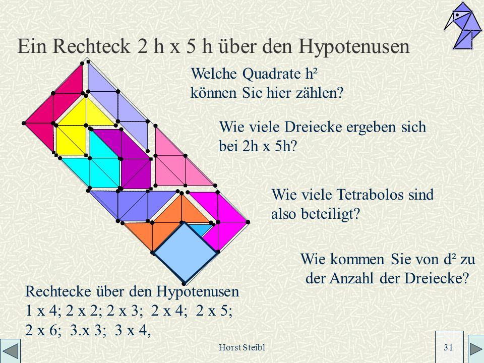 Horst Steibl 31 Ein Rechteck 2 h x 5 h über den Hypotenusen Wie viele Dreiecke ergeben sich bei 2h x 5h.