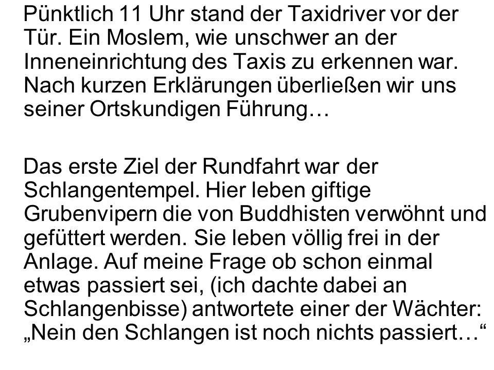Pünktlich 11 Uhr stand der Taxidriver vor der Tür. Ein Moslem, wie unschwer an der Inneneinrichtung des Taxis zu erkennen war. Nach kurzen Erklärungen