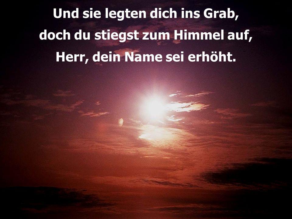 Und sie legten dich ins Grab, doch du stiegst zum Himmel auf, Herr, dein Name sei erhöht.