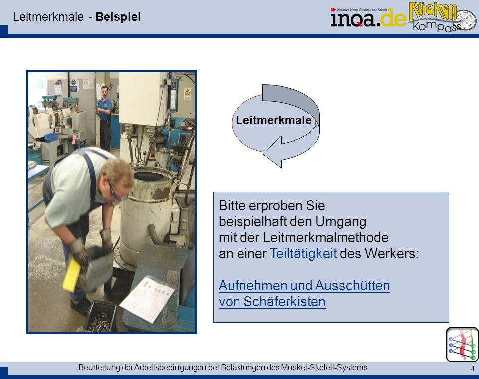 Beurteilung der Arbeitsbedingungen bei Belastungen des Muskel-Skelett-Systems 15 Ein Beispiel - Video Start des Videos mit einem Mausklick auf das Bild