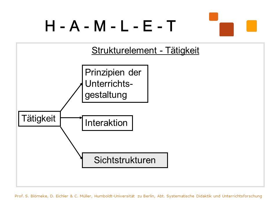 H - A - M - L - E - T Strukturelement - Tätigkeit Prof. S. Blömeke, D. Eichler & C. Müller, Humboldt-Universität zu Berlin, Abt. Systematische Didakti
