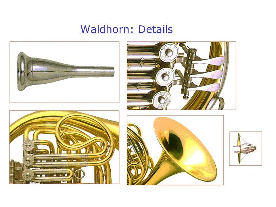 Waldhorn: Details