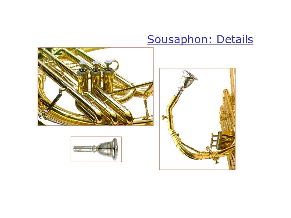 Sousaphon: Details