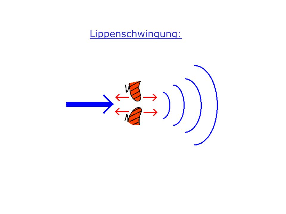 Waldhorn (French Horn)