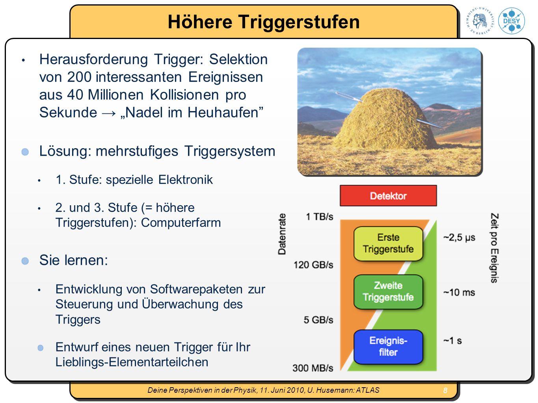8 Deine Perspektiven in der Physik, 11.Juni 2010, U.
