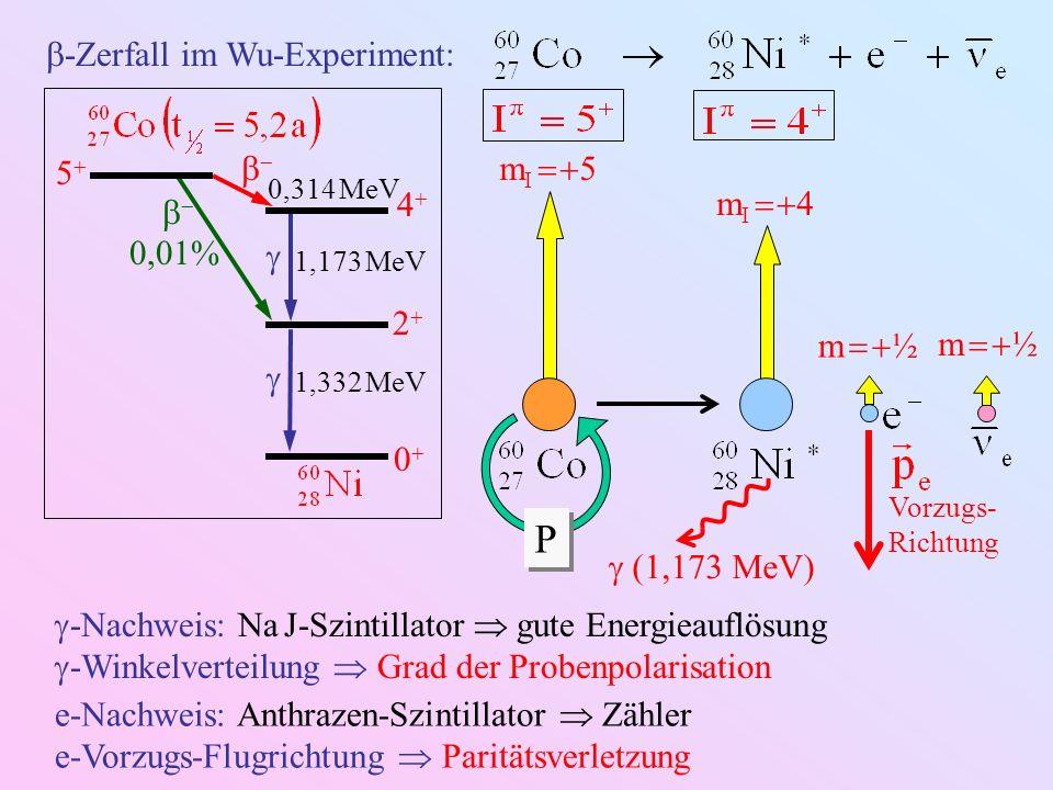 -Zerfall im Wu-Experiment: 4 2 0 5 0,01% 0,314 MeV 1,173 MeV 1,332 MeV (1,173 MeV) m I 5 P P m I 4 m ½ -Nachweis: Na J-Szintillator gute Energieauflös