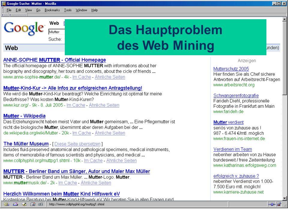 Das Hauptproblem des Web Mining