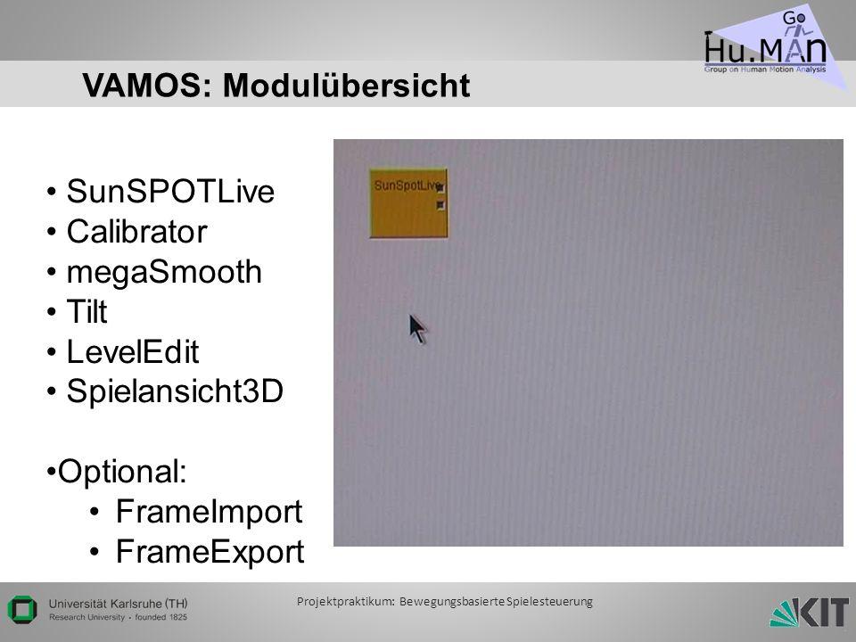 VAMOS: Modulübersicht SunSPOTLive Calibrator megaSmooth Tilt LevelEdit Spielansicht3D Optional: FrameImport FrameExport Projektpraktikum: Bewegungsbasierte Spielesteuerung