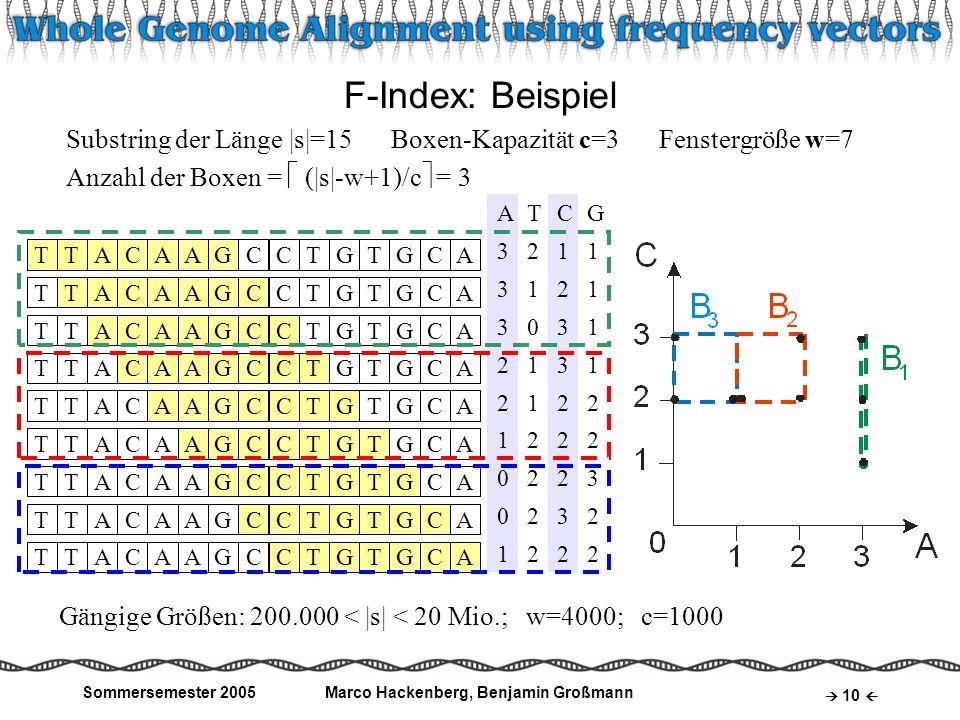 Sommersemester 2005Marco Hackenberg, Benjamin Großmann 10 F-Index: Beispiel Substring der Länge  s =15 Boxen-Kapazität c=3 Fenstergröße w=7 Anzahl der