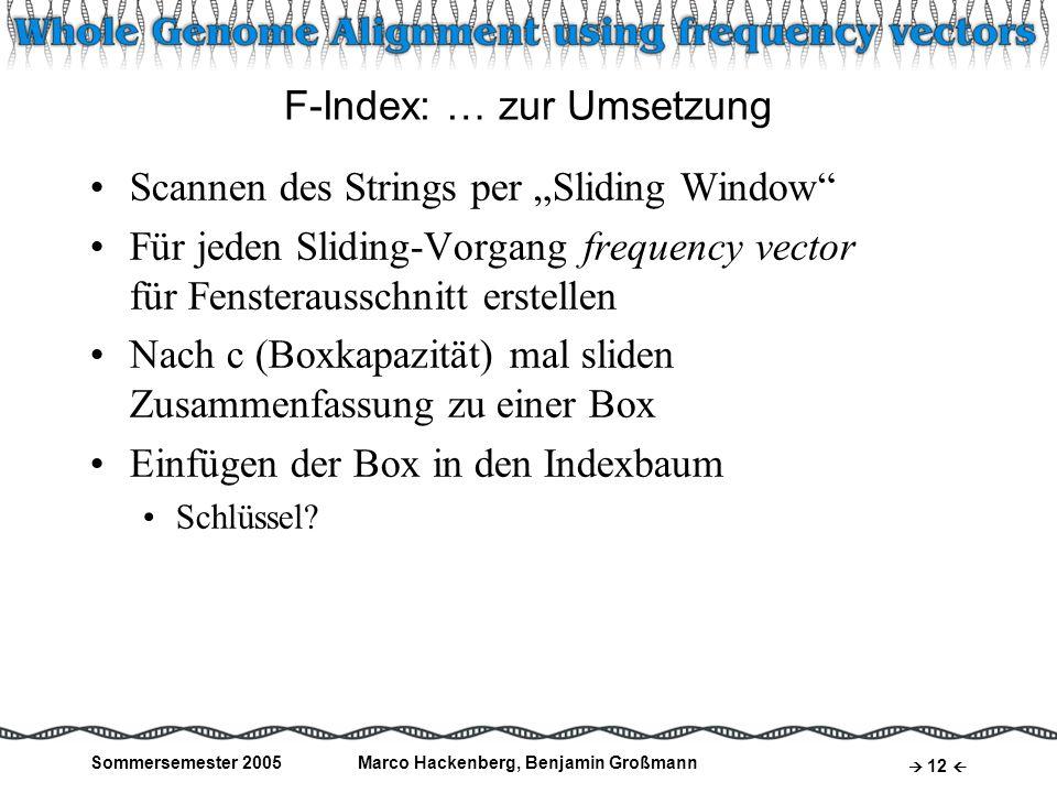 Sommersemester 2005Marco Hackenberg, Benjamin Großmann 12 F-Index: … zur Umsetzung Scannen des Strings per Sliding Window Für jeden Sliding-Vorgang fr