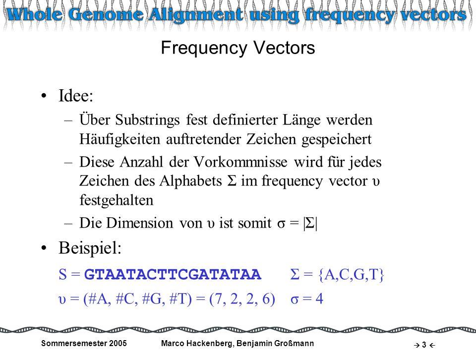 Sommersemester 2005Marco Hackenberg, Benjamin Großmann 14 Frequenzraum partitionieren zweiter String: Erstellen von frequency vectors durch Shifting Window Problem: Errechnen der frequency scores aller Box-Punkt-Paare dauert lange: O( B * v ) Aber: ähnliche Substrings haben ähnliche frequency vectors Zerteilen den Frequenzraum des zweiten Strings in Teilbereiche Vergleichen nur innerhalb benachbarter Regionen Rest: Mismatch Benutzung der equi-depth- histogram Technik Ziel: gleiche Anzahl von Punkten je Partition